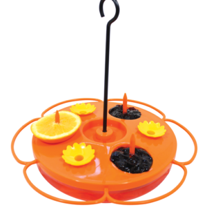 Oriole feeder is an orange poly enclosed plate with posts and yellow flower drinking spouts