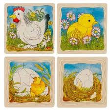 Learning about nature. Look at the 4 layer puzzle and see from an egg to a chicken.