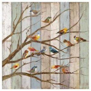 Backyard Birds & Butterflies