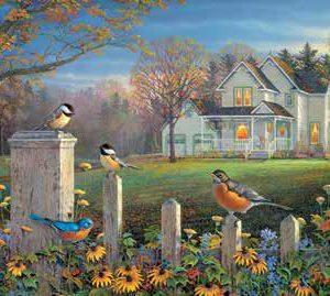 puzzle evening birds