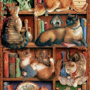 many varieties of cats lounging and playing on a bookcase