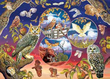 puzzle owl magic