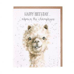 alpaca face on card
