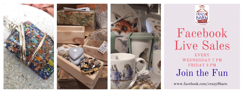 Crazy 8 Barn Facebook Live Sale promotion with jewellery, DIY kits and Wrendale mugs