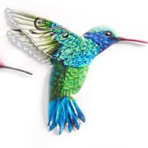 Hummingbird - Blue Throated flying
