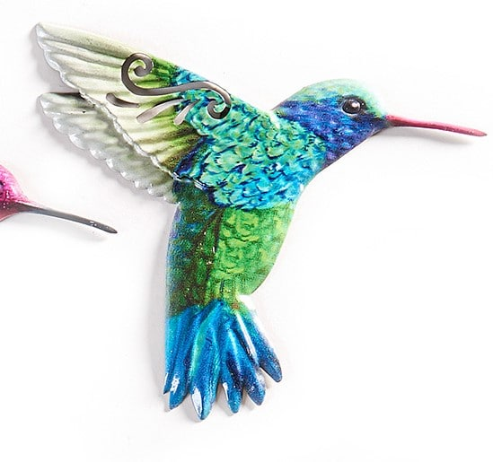 Hummingbird - Blue Throated flying