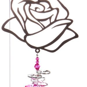 Crystal - Blooming Month Rose - June