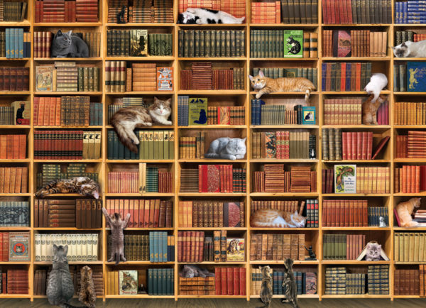 the-cat-library